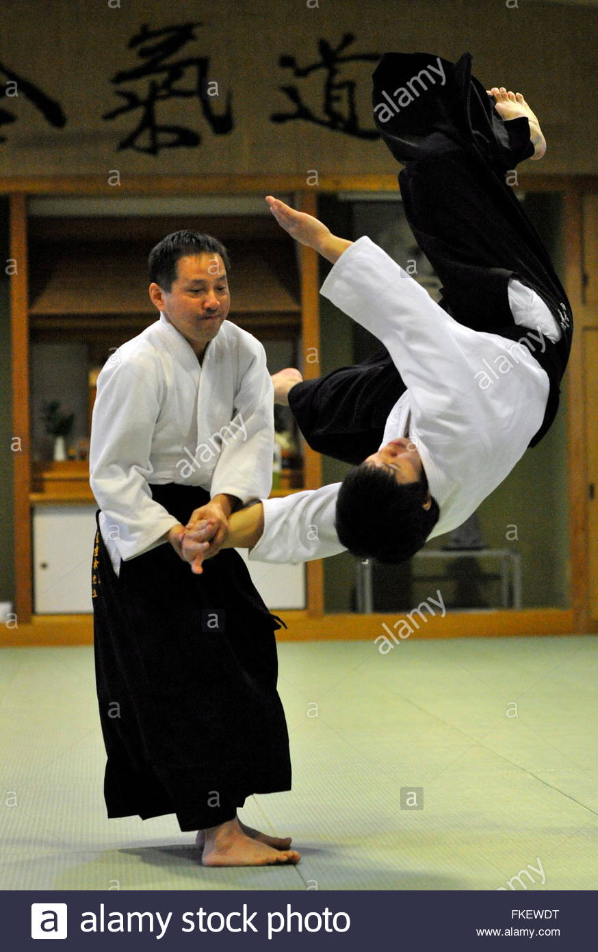 sports athlete svetlana druzhinina beautiful a woman practice aikido aikido martial arts industrial complex hakama kimono