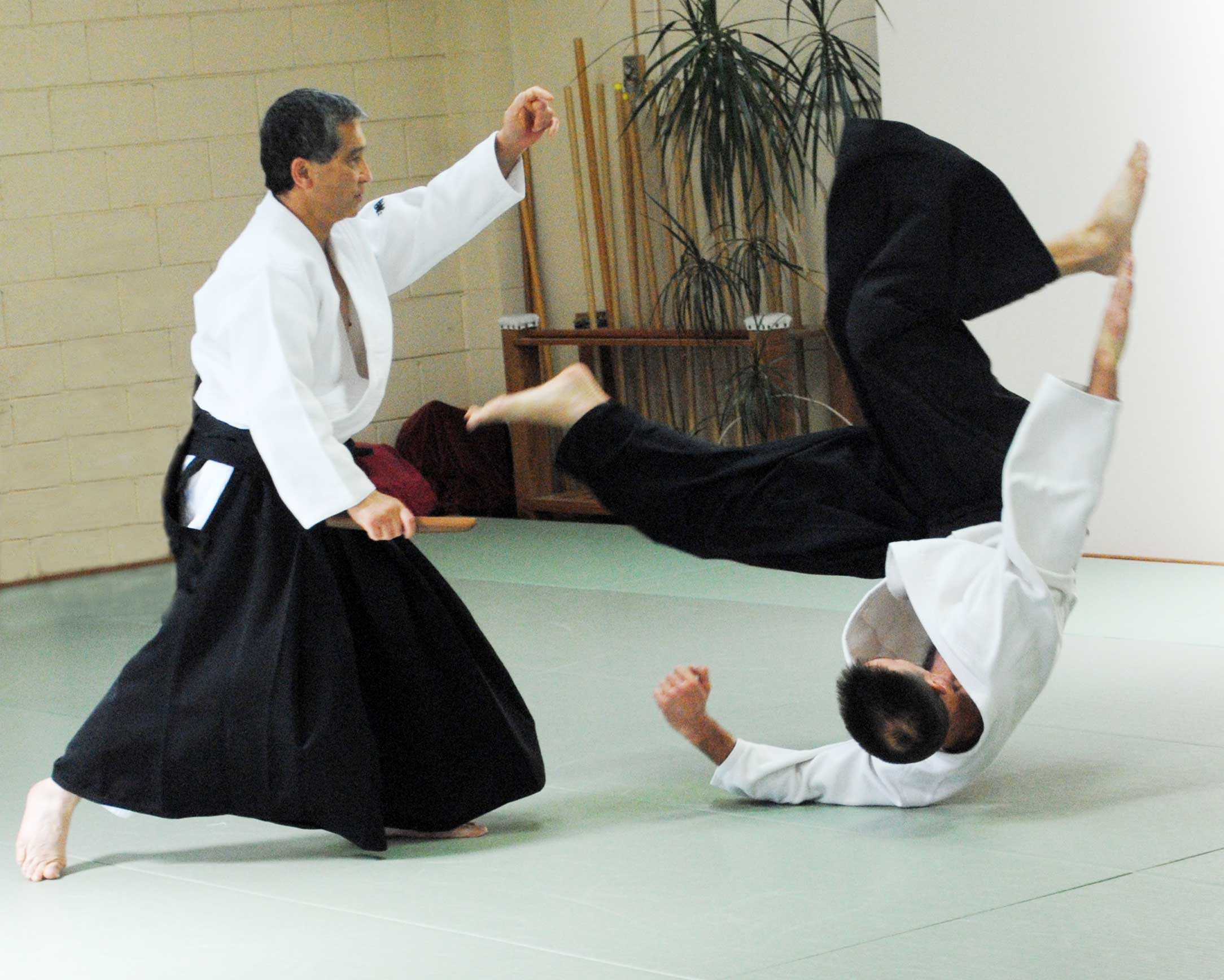 Aikido vs other martial arts.