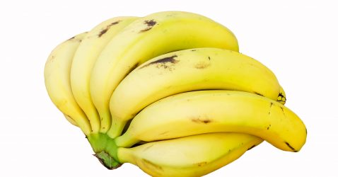 Cavendish bananas are the most common dessert bananas sold