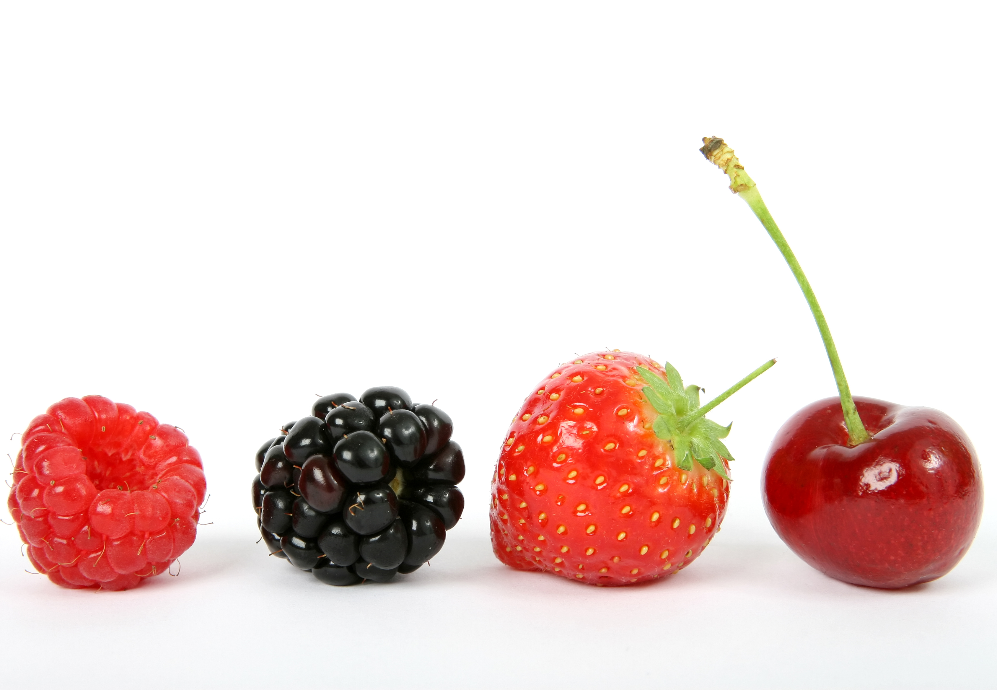 Contest Directions: Photoshop this berries image (click to download) ...