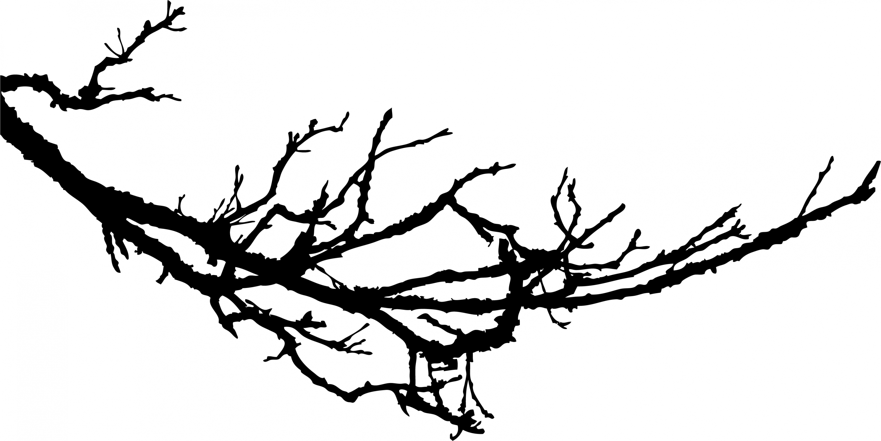 Silhouette Branch Clipart #1