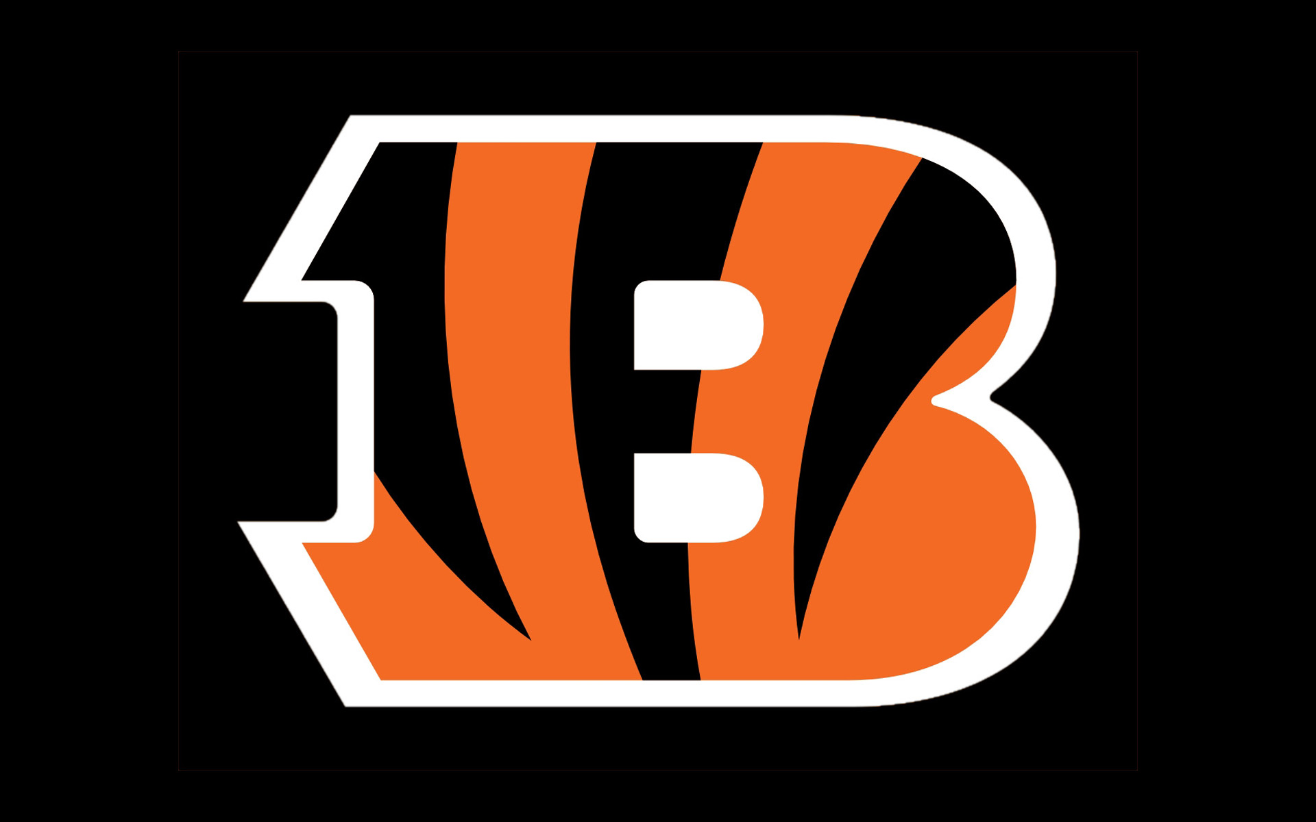 1000+ images about Cincinnati Bengals!!! on Pinterest | Cincinnati bengals