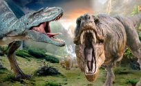 Dinosaurs 3D Animated Short Movie | Dinosaurs Cartoons For Children - YouTube