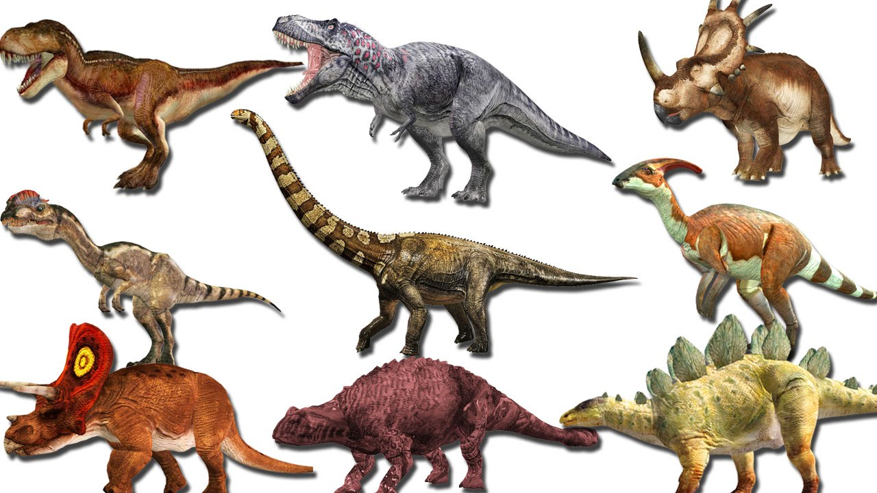 essay dinosaurs kids An interesting story for kids on dinosaurs kunal rana here you can publish your research papers, essays, letters, stories, poetries, biographies.
