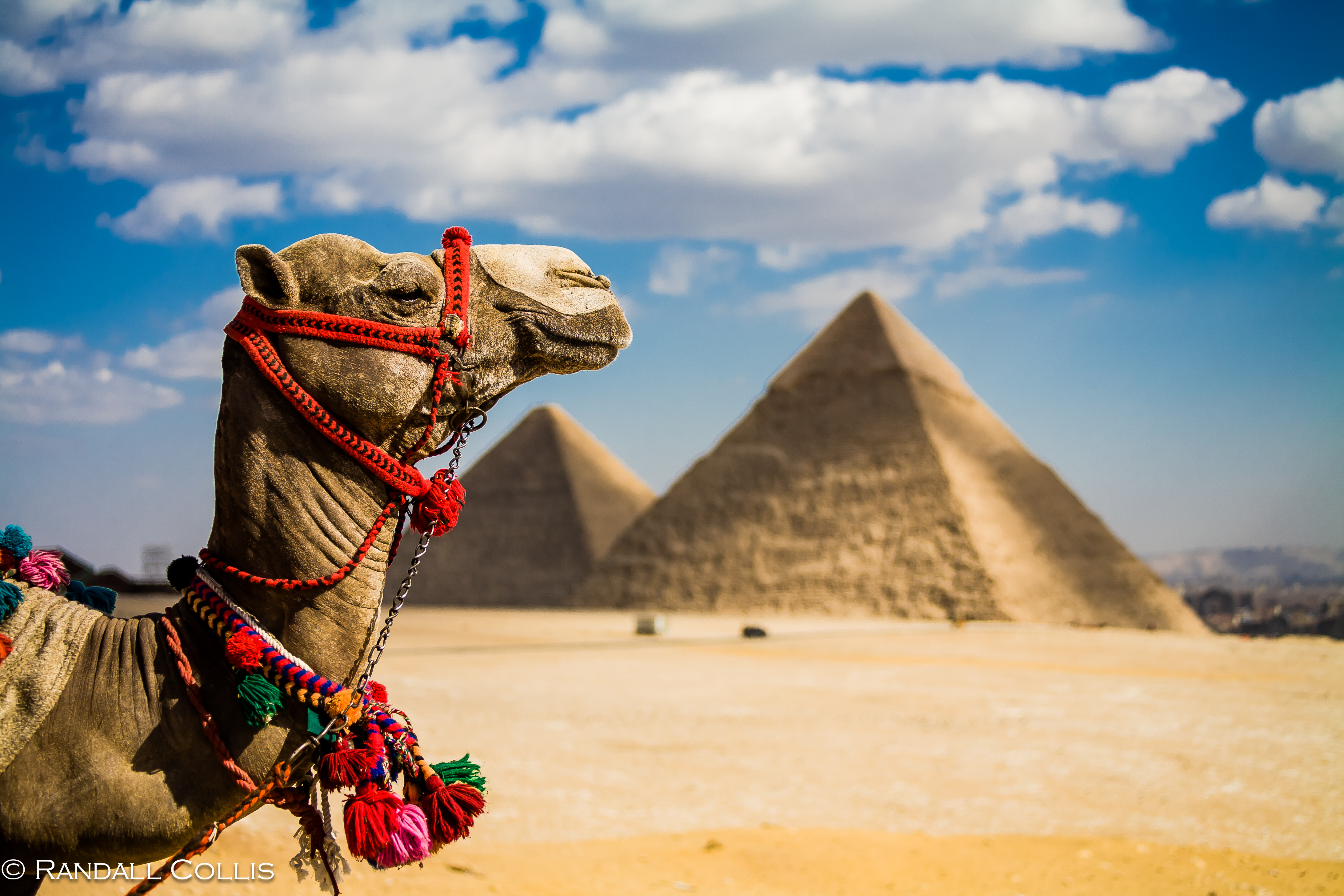From Omaha to Egypt: How to Forget the Pyramids