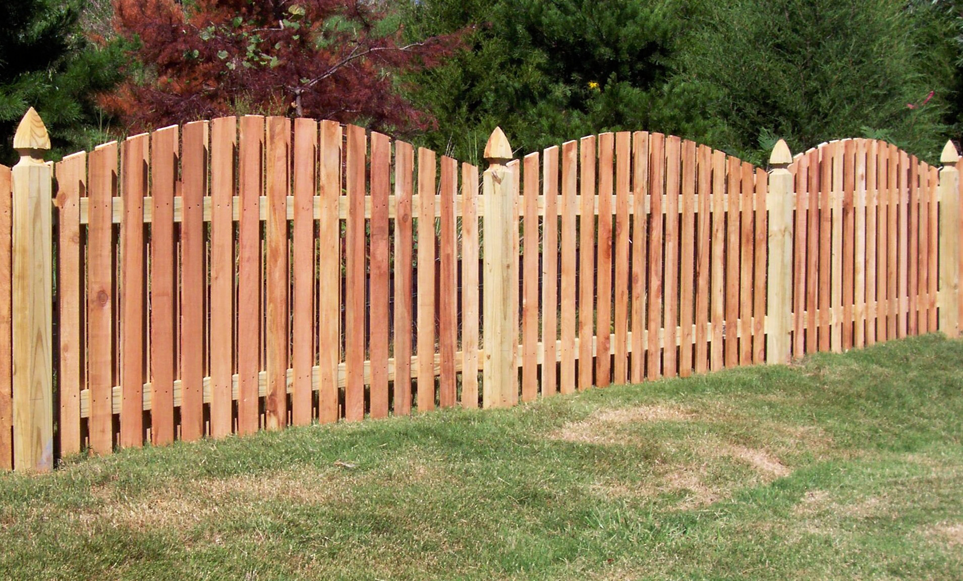 1000+ images about fence ideas on Pinterest   Front yard fence