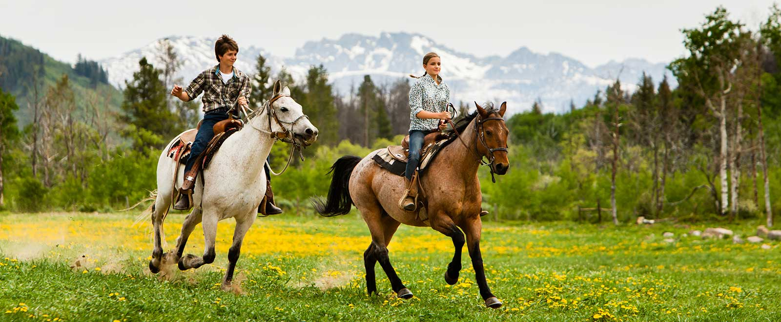 summit-county-co-horseback-riding