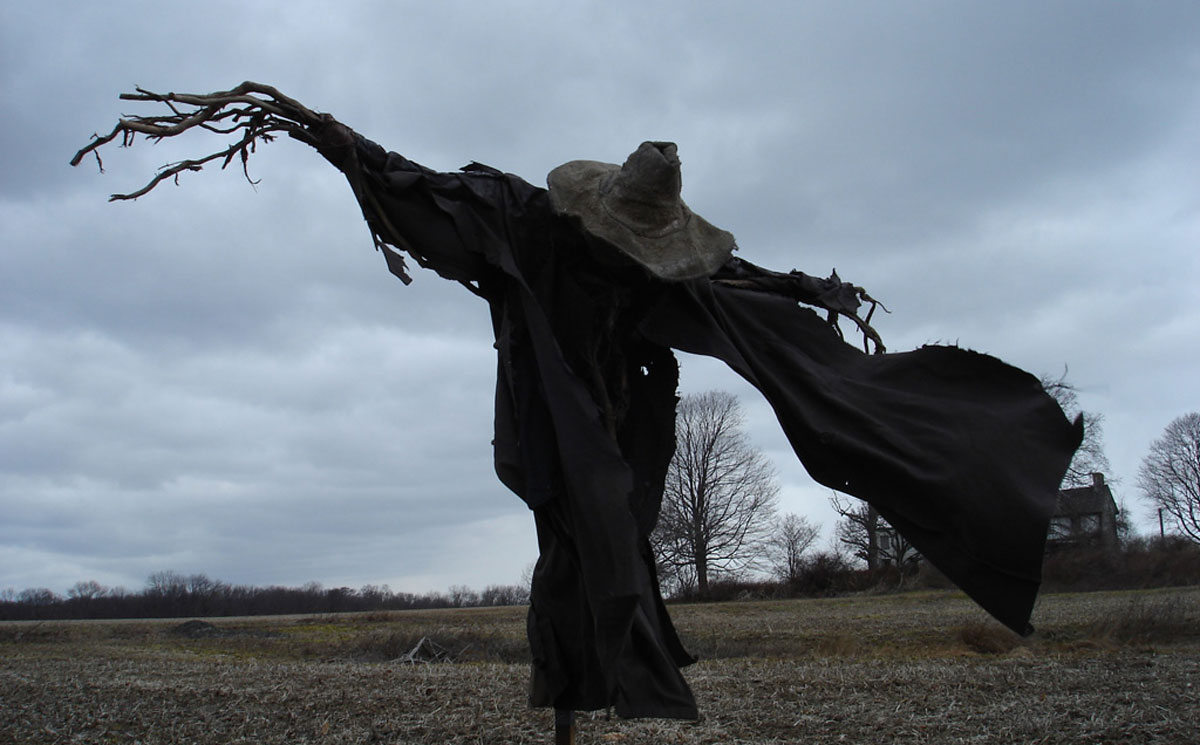 Man: The Curious Life and Times of Scarecrows