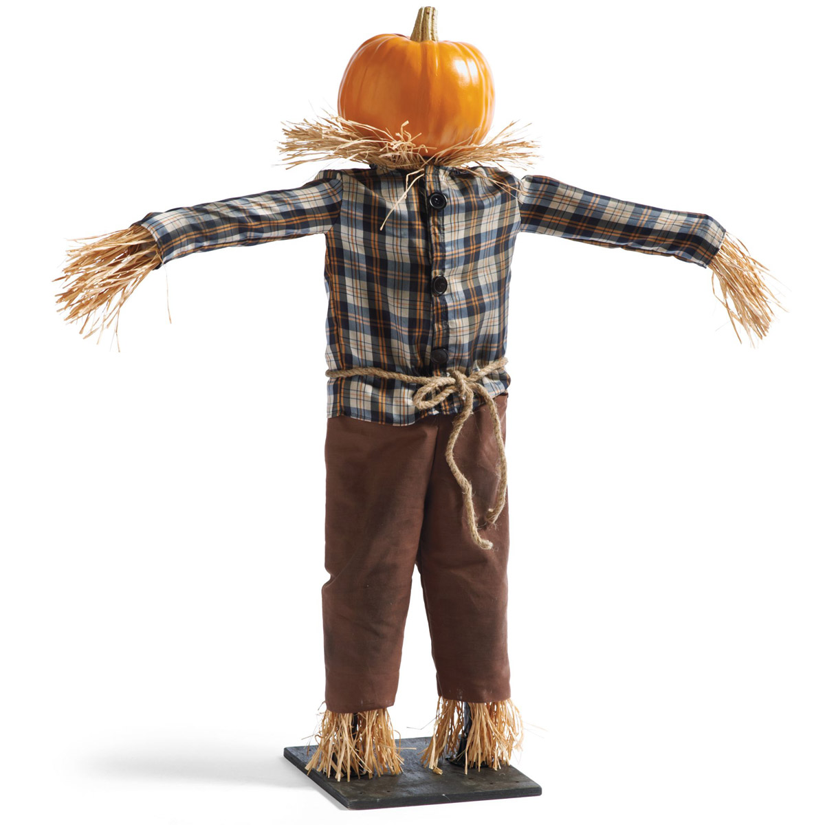 Scarecrow Physiology