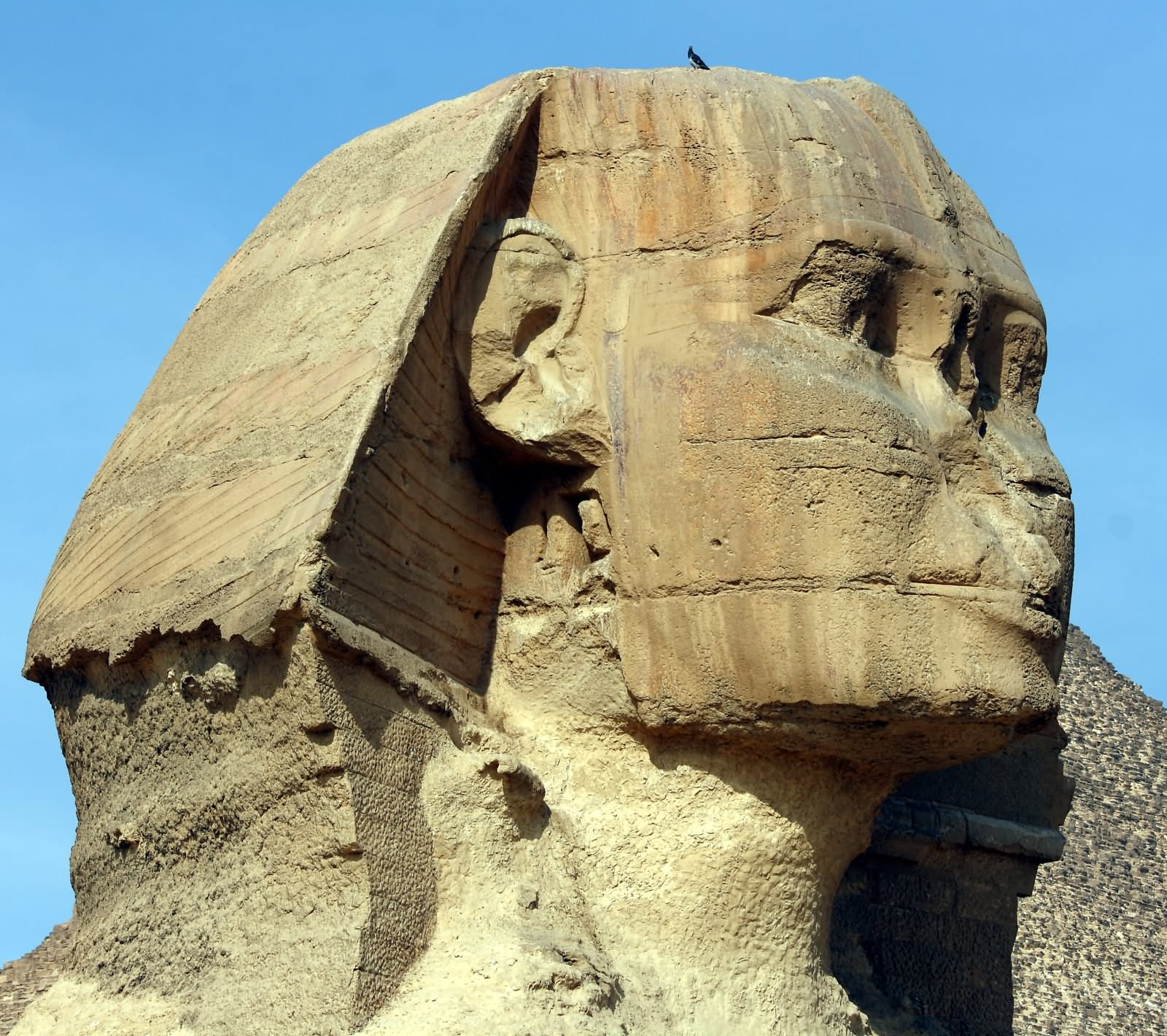 File:Great Sphinx of Giza 9049.jpg