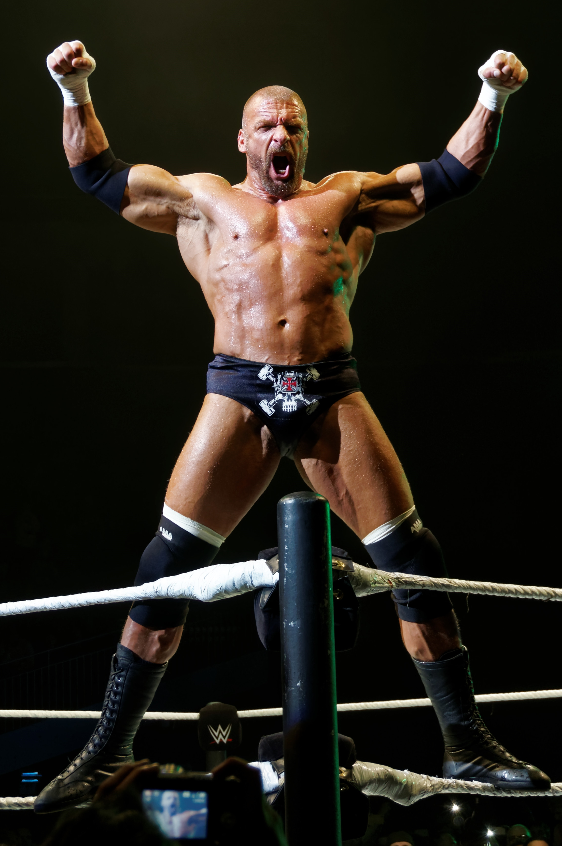 Triple H in April 2016.jpg