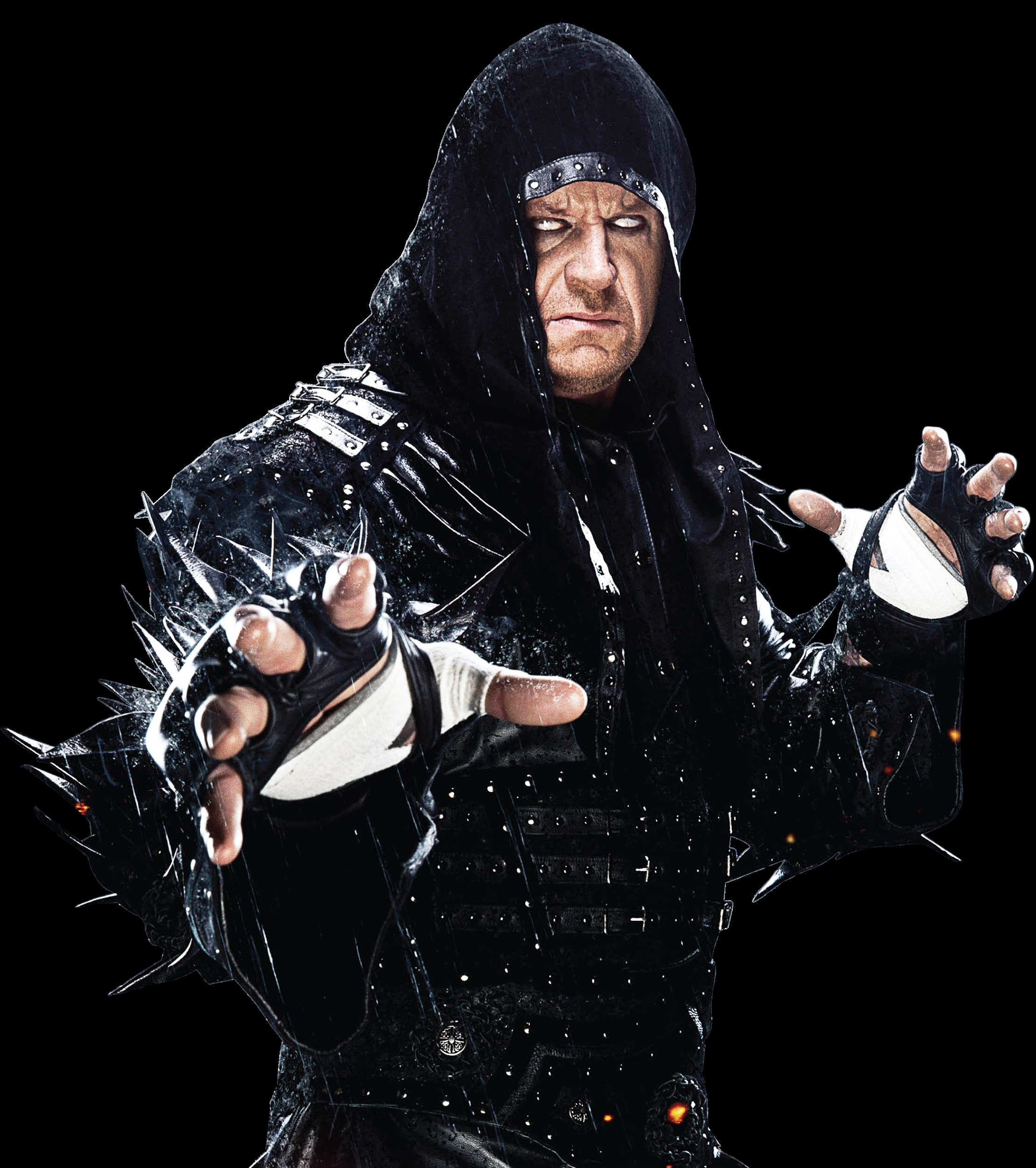 Undertaker and WWE
