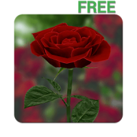 3D Rose Live Wallpapers