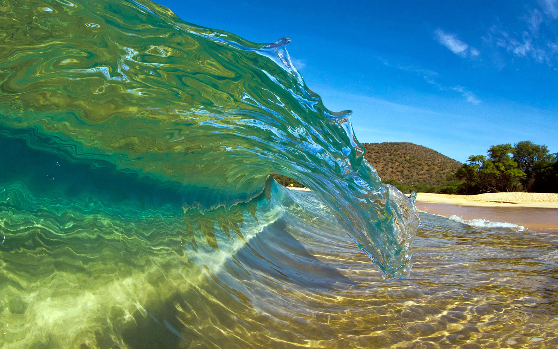 Download awesome water wallpapers gallery - Aquatic wallpaper ...