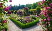Beautiful Flower Garden Wallpapers Download