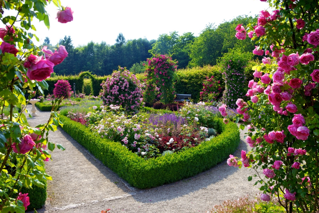 Download Beautiful Flower Garden Wallpapers Download Gallery
