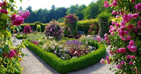Beautiful Wallpapers Of Flower Gardens