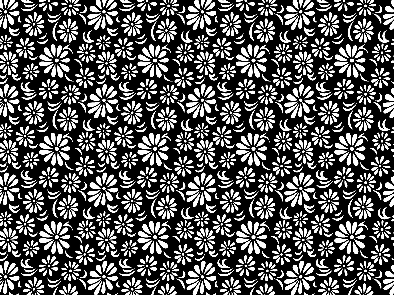 Flower Wallpaper Tumblr Black And White Bacalaureat2010fo