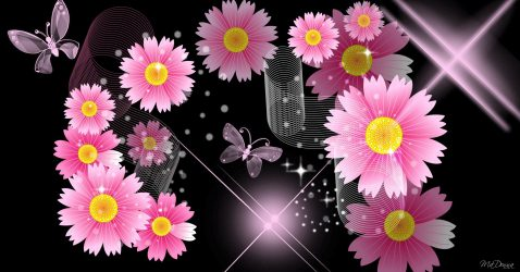 Black With Pink Flowers Wallpaper