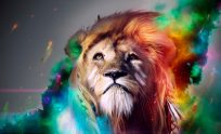Cool High Definition Wallpapers