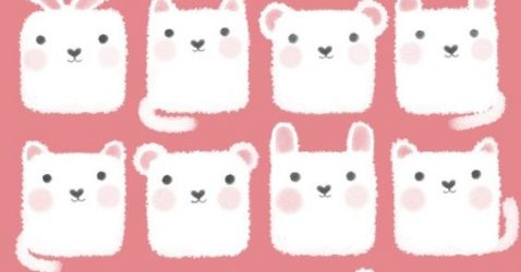 Cute Iphone 5 Wallpaper