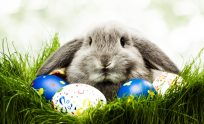 Easter Desktop Wallpaper