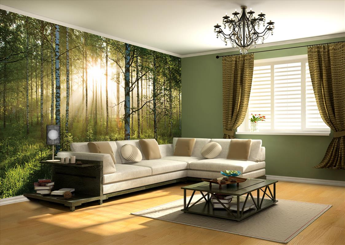 Full Wall Mural Wallpaper