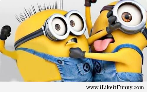 Attractive Download Funny Minion Wallpaper Gallery