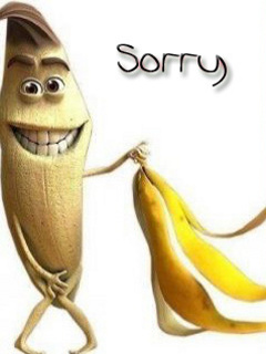 Funny Sorry Wallpaper Gallery