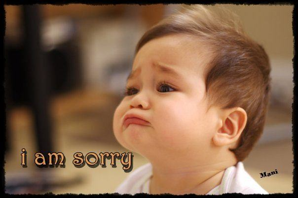 Download Funny Sorry Wallpaper Gallery