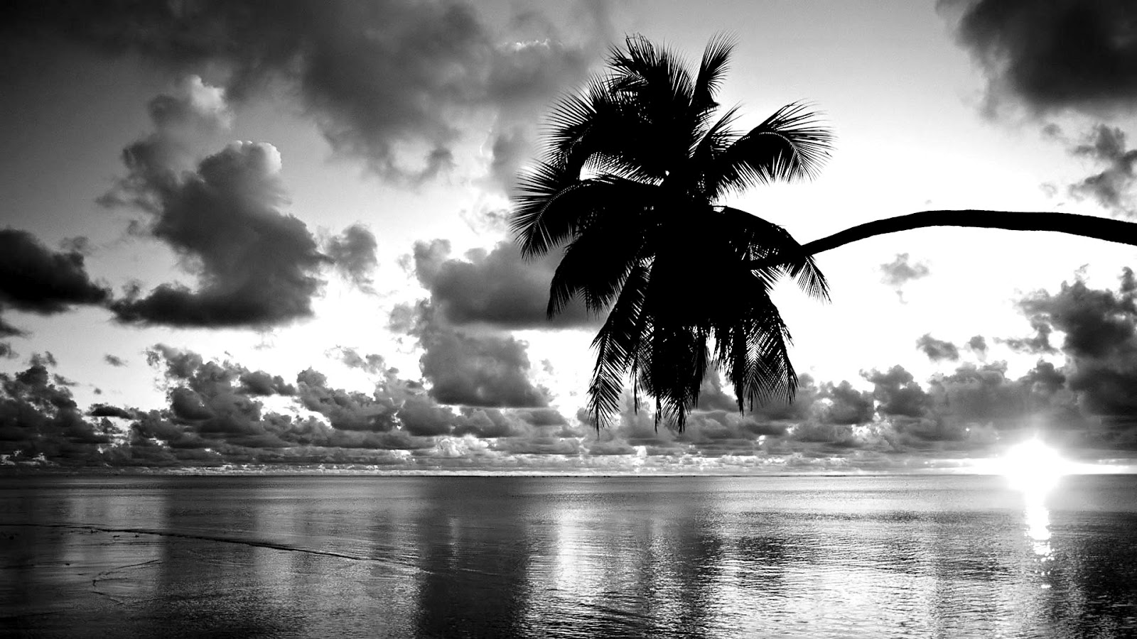 Hd Black And White Wallpapers
