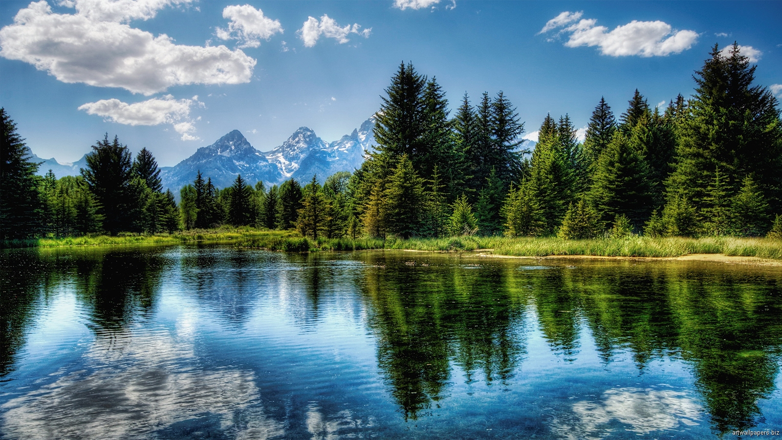 High Definition Wallpapers Nature