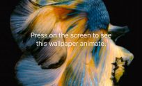 How To Put A Live Wallpaper On Lock Screen