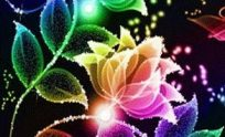 Live Flower Wallpapers