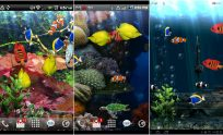 Live Wallpapers Apps