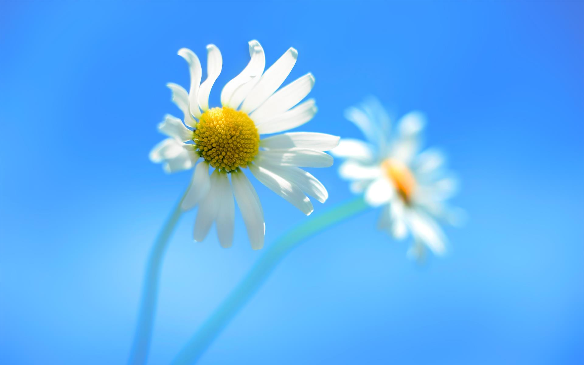 Lock Screen Wallpapers For Windows 8
