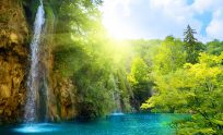 Nature High Definition Wallpapers