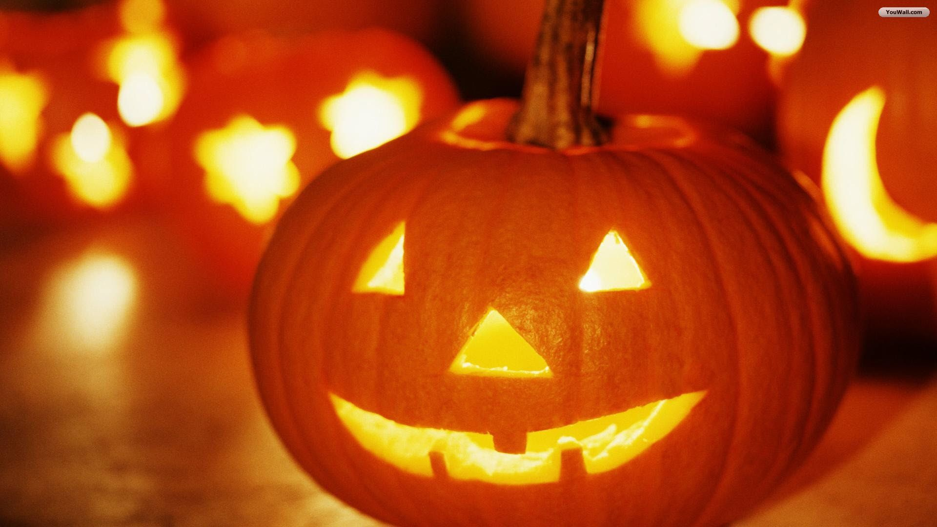 Pumpkin Halloween Wallpaper