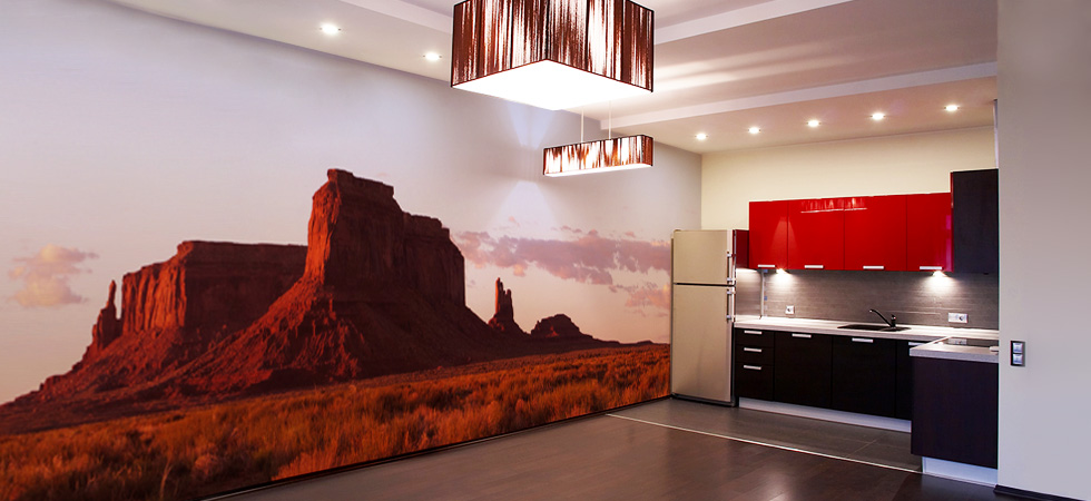 Removable Wall Murals Wallpaper