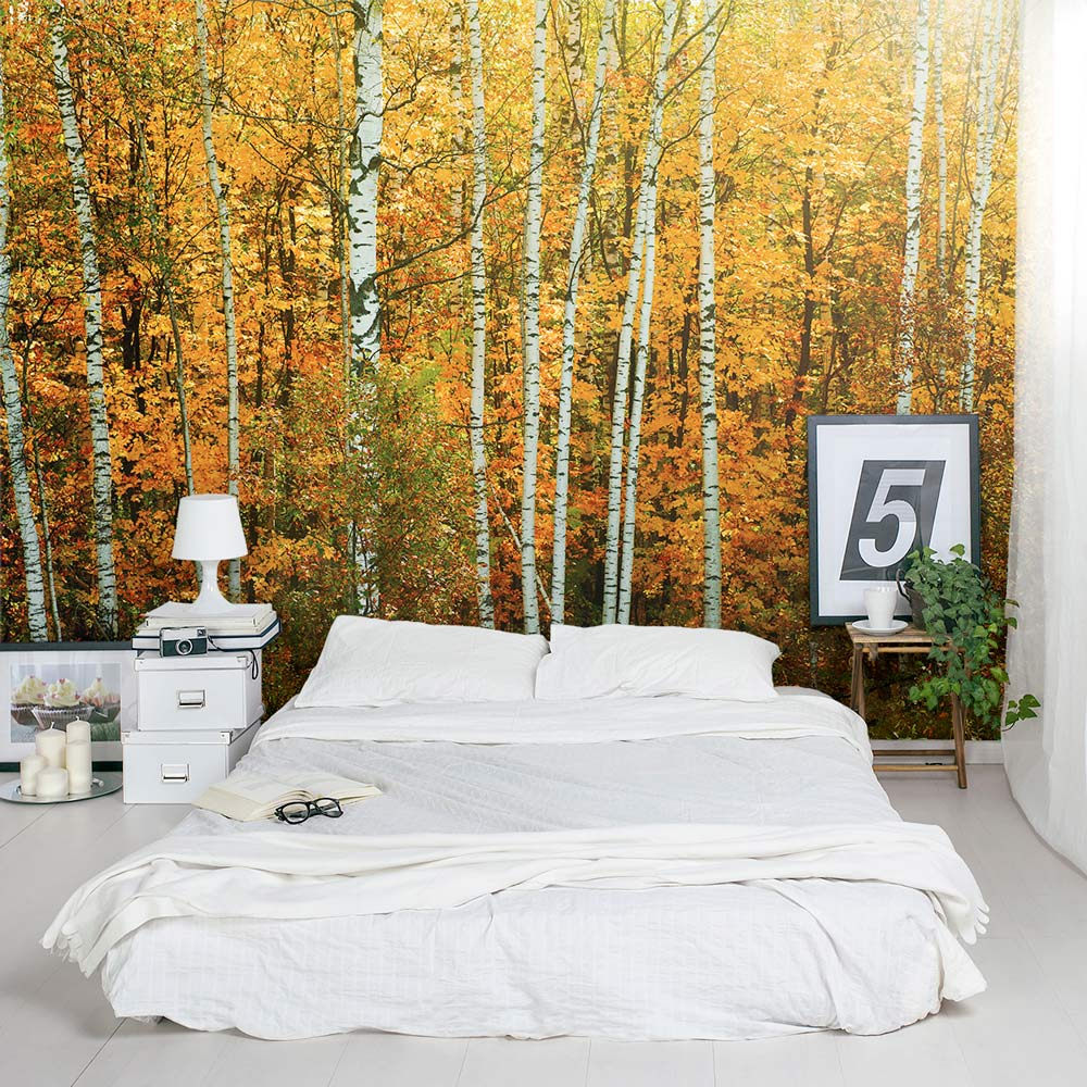 Birch tree wallpaper bedroom 280380 - som300.info