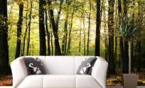 Removable Wallpaper Murals