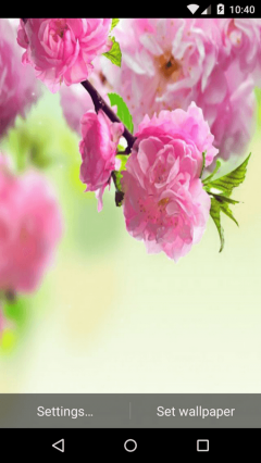 Spring Live Wallpapers