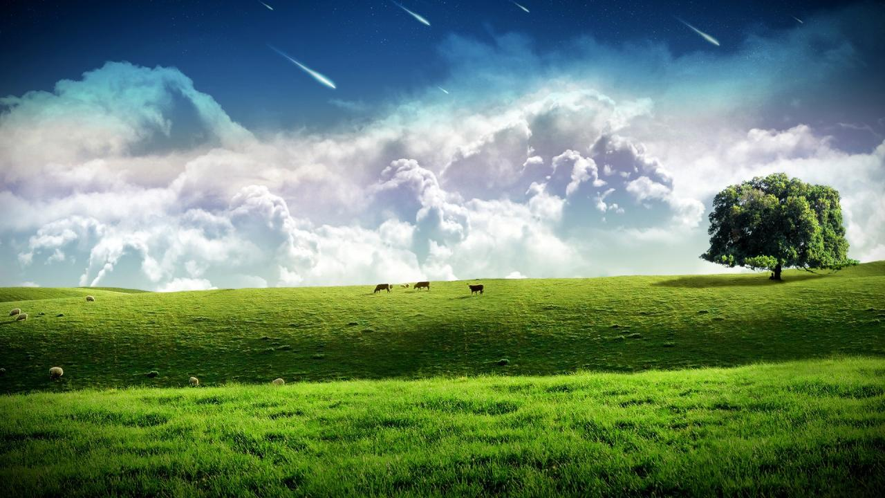 1280x720 HD Wallpapers Free Download