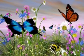 3D Butterfly Live Wallpaper HD