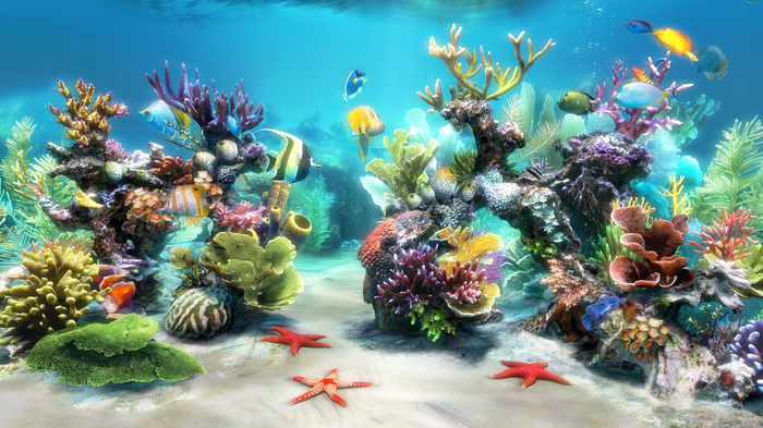 3D Live Wallpaper Free Download For Pc