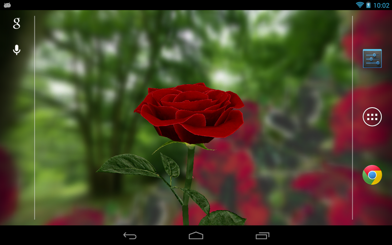 Download 3D Rose Live Wallpaper Download Gallery