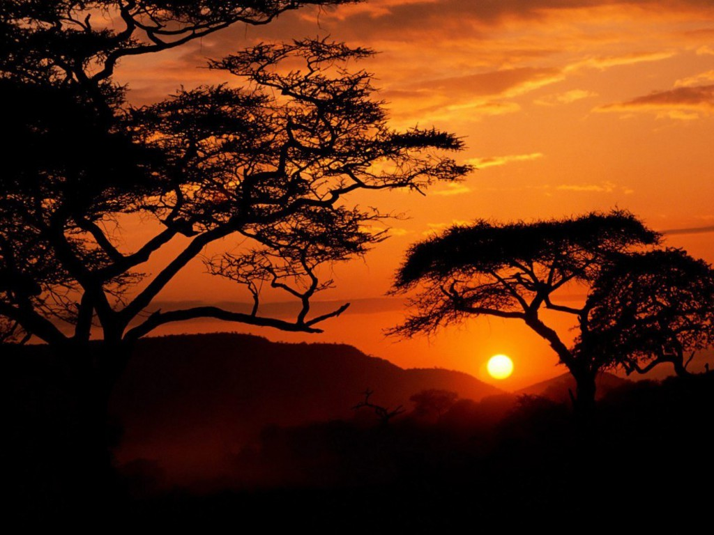 Africa Nature Wallpaper