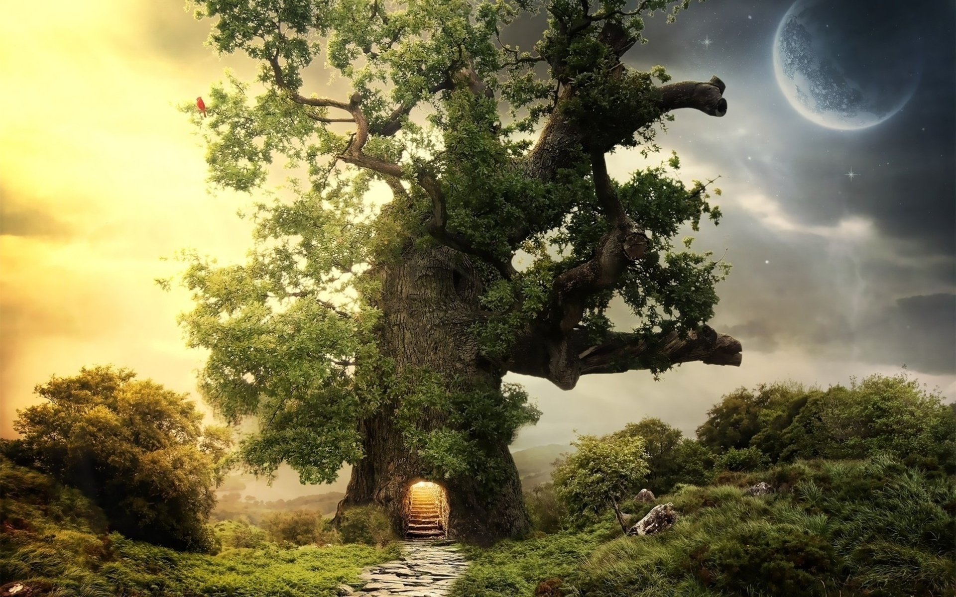Amazing Tree Wallpaper