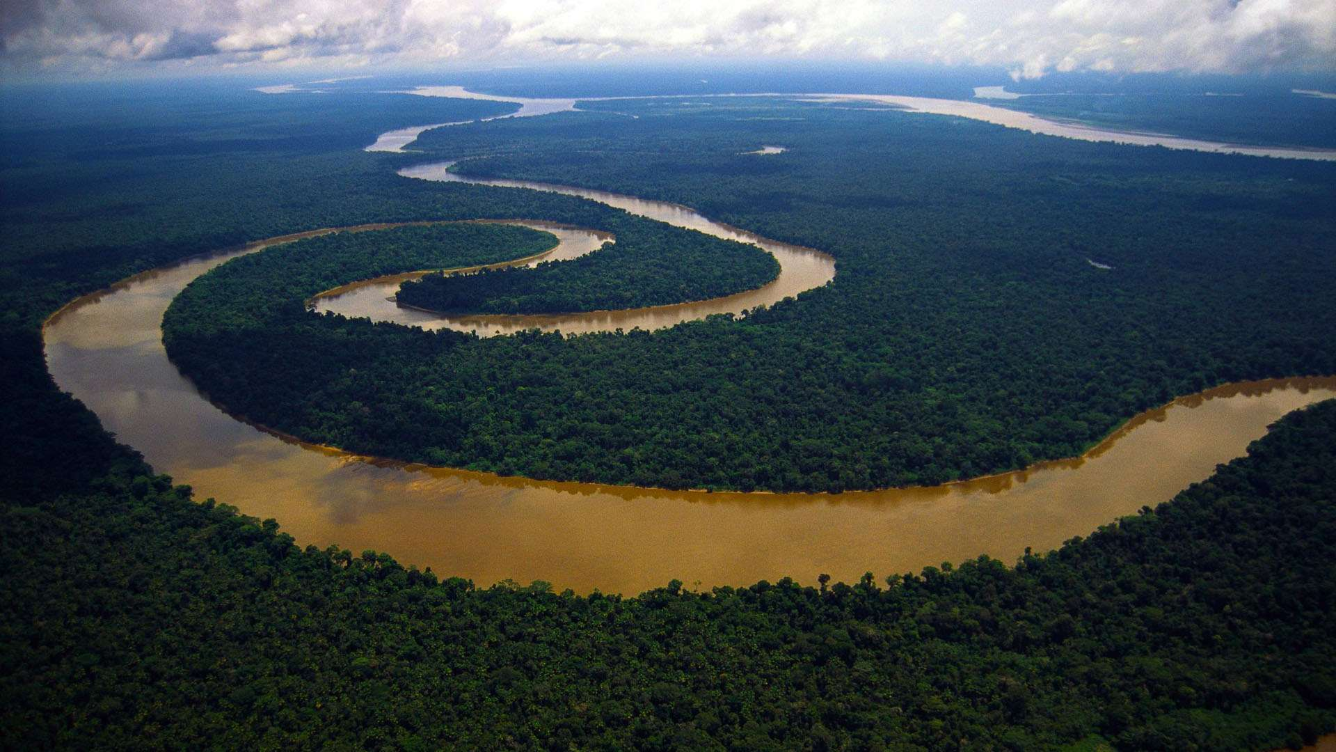 Amazon River HD Wallpaper
