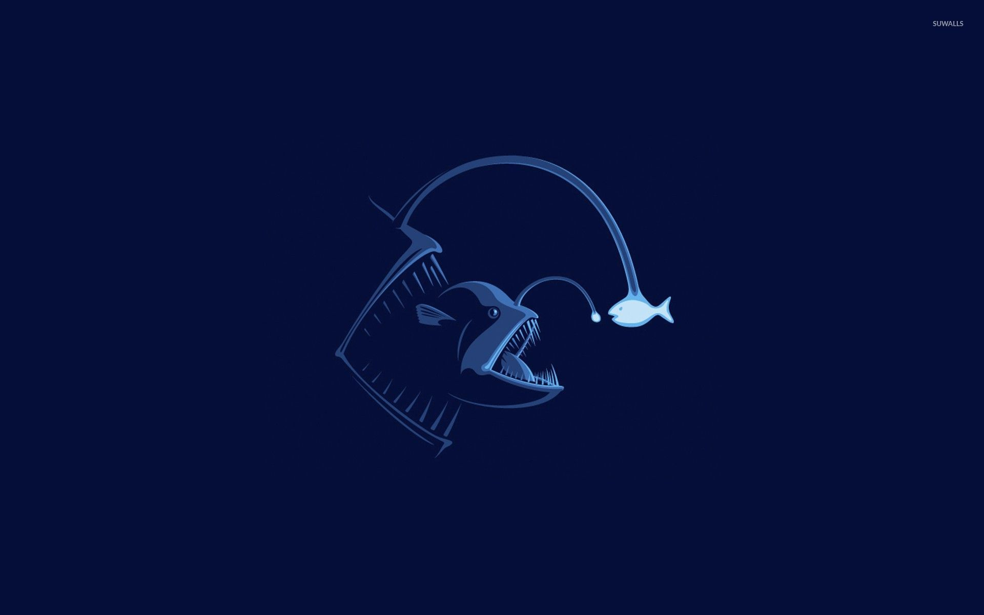 Angler Fish Wallpaper